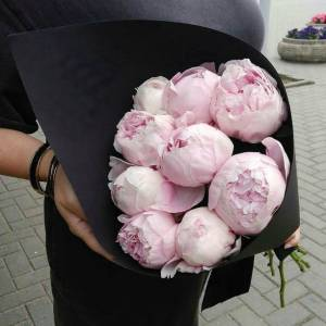 Букет 9 розовых пионов в черном крафте R592