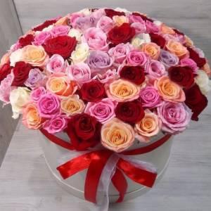 101 разноцветная роза в коробке R887