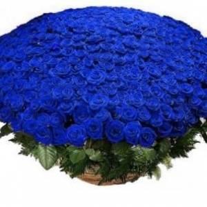 Корзина 301 синяя роза R931