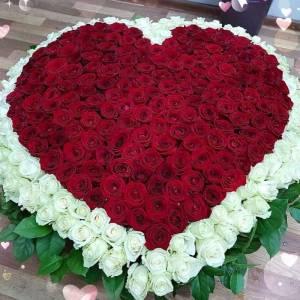 Букет 501 роза в форме сердца в корзине R928