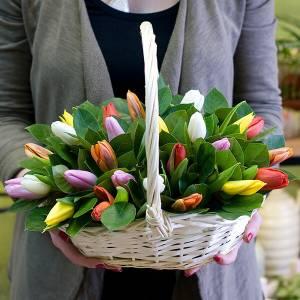 Корзина 35 разноцветных тюльпанов R997
