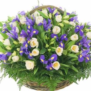 Большая сборная корзина ирисы и тюльпаны R1017