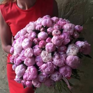 Букет 75 розовых пионов с лентами R1094